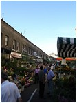 Columbia Road Market - 02