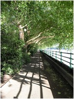 Free London Events - Fulham - Talk The Walk