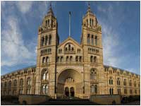 Free London Events - Talk the Walk London - The Natural History Museum